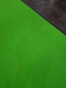 Foto: Nadines Schatten lässt sich leicht auf einem grünen Teppich erkennen.